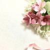 札幌で婚活をしたい!バツイチでもおすすめの場はある!?