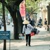 ベトナム (ダナン)春休みの女子旅におすすめリゾート2019