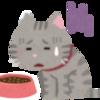 シニア猫の食欲不振!どのくらい経つと危険?可能性のある病気は?
