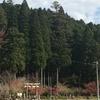 岐阜県関市 モネの池
