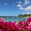 ハワイでバカンスしてきました その4