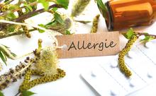 「アレルギー」は英語でなんて言う?