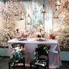 《本店3階》❀✿洋風の桜✿❀ブーケアレンジデモ レポート