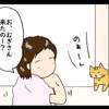 お風呂上りの人間を見つめる猫(日常マンガ)