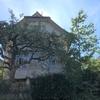 【番外編:スイス 後編】CabriO(カブリオ) ~楽して山の頂上のカフェへ~