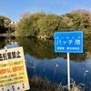 バッチ池(兵庫県淡路)