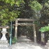 枚方交野天神社と「市民の森」の花菖蒲と紫陽花