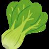 家庭菜園 -青梗菜とのあれこれー