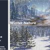 Winter Nature 雪が降り積もった景色が作れるTerrain用マテリアルと、冬の木々、草、岩の自然系3Dモデル