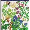 歴史秘話ヒストリア「牧野富太郎 夢の植物図鑑」、見ました(008)