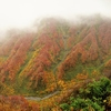 晩秋の奈曽渓谷