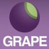 Grapeを使ったAPI実装でのネストやパラメータ