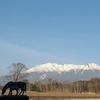 雪景色の御嶽山(御岳山)・2021年4月01日②