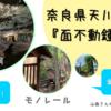 奈良県天川村の鍾乳洞。夏でもとっても涼しかった!面不動鍾乳洞