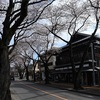 多摩川桜百景 -52. 都営多磨霊園-