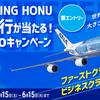 nanaco利用でANA FLYING HONU遊覧飛行が当たるキャンペーン!(5/15-6/15:要エントリー)