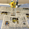 鳥取県の新聞流通考察