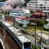 JR根岸線 山手の桜 2015