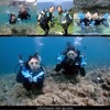 Blue cave snorkel & diving Part 2