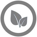 ビーガンFXトレーダー成長ブログ