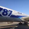 【SFC修行2017】正月沖縄① 修行と旅行の両立を目指して!発券した航空券は?