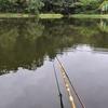 富沢の池39(今回は、ちびっこ釣り師が2人です)