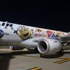 秋田空港とJAL2176便ミニオンジェット2搭乗記(どこかにマイル秋田旅行6)