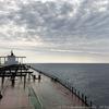 バルカー乗船記その17(2018年6月22日:乗船31日目)東航路で最難関のアロール海峡を通峡
