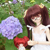 に3シロタマ愛のフラワーパーク02 紫陽花攻め