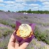 ロンドンから行けるラベンダー畑Mayfield Lavender Farmに行ってきた