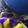 漁業の現場レポート!氷見の定置網漁師に一日入門