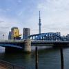 駒形橋、中路式のアーチと上路式アーチの一体感!