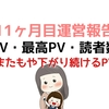 ブログ初心者の11ヶ月目運営報告~12/23よりPVが減少~【アクセス数・記事数】