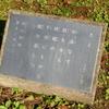 万葉歌碑を訪ねて(その290)―東近江市糠塚町 万葉の森船岡山(31)―