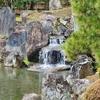 二条城二の丸庭園の池(京都府京都)