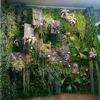 ≪本店3階≫BITO Green / Flower Creatives 尾藤祐子氏によるGreen wall-Style