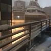 東京、降雪だってさ。だった日