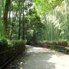野宮神社と新しい内側の自分