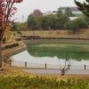 中津川公園の池(岐阜県恵那)