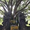 ティルタエンプラ寺院