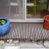 カフェの庭の小宇宙