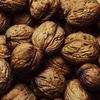 【脳科学】理学療法士オススメ!脳の活性は食事から!必須栄養素を紹介!