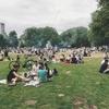 「パークマネジメント」の概要と歴史――行政・企業・市民が一緒に創り出す、これからの公園の在り方