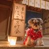 生駒聖天お彼岸万灯会2019