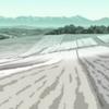 TVアニメ『<物語>シリーズセカンドシーズン(鬼物語)』舞台探訪(聖地巡礼)@美瑛編