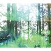 「CINEMAS」大瀧ヌーさん  1 Full Album リリースワンマンライブ@今池tokuzo ありがとうございました!