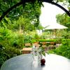 都心から50分!静岡・花と緑とアート溢れる「クレマチスの丘」