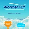 クラウドファンディングの説明書:WonderFly編