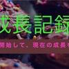 【継続中】ブログの成長記録を残します!!