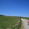【万年山】ミヤマキリシマ満開!二重メサの草原をファミリー登山